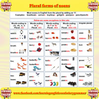 plural forms of nouns-200