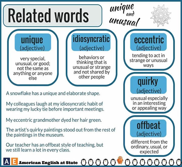 related-words-unique-and-unusual