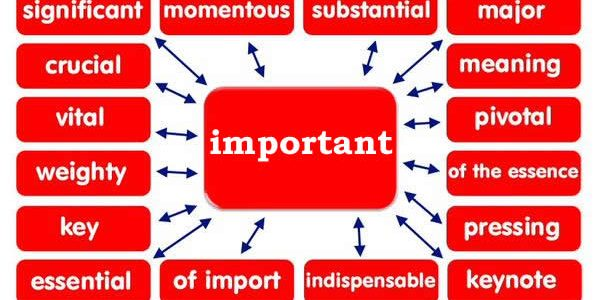 synonym-words-important