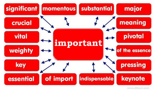 Synonym Words – Important | Vocabulary Home