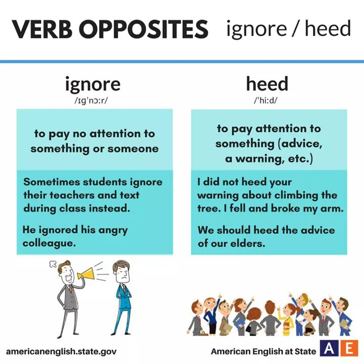 verb-opposites-ignore-heed