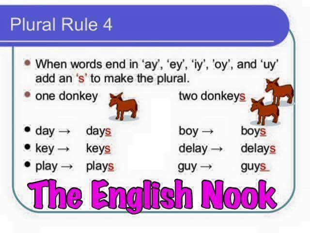 Plural Rules English Grammar Vocabulary Home