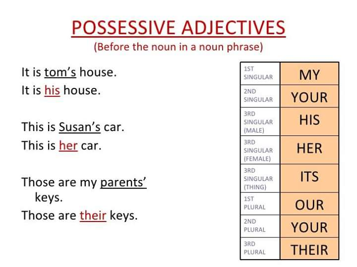 possessive-adjectives-2