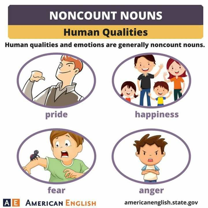 Count and Noncount Nouns-1