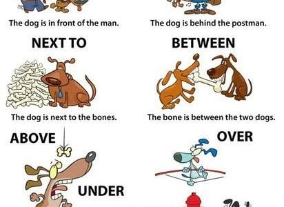 Prepositions Vocabulary Home - Next to preposition